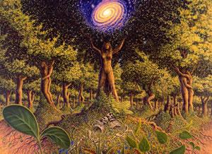 zemlja-drevesa